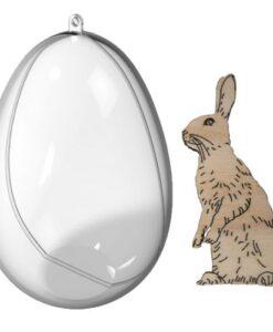 Transparante Eieren met Kuiken en Haas