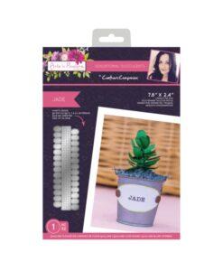 Sensational Succulents - Snijmal - Jade